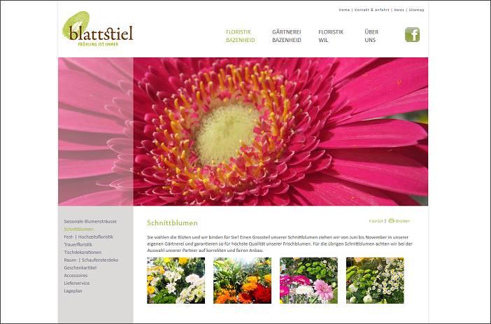 Bild - Blattstiel, Gärtnerei und Floristik