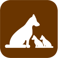 Hundezucht